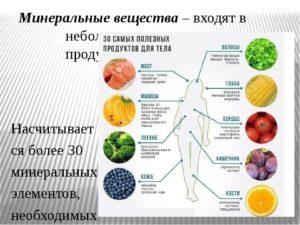 Как сохранить здоровье легких: продукты, полезные для легких, а также возможные заболевания