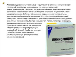 Линкомицин в таблетках особенности применения антибиотика