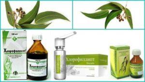 Особенности применения раствора Хлорофиллипта при ЛОР-заболеваниях