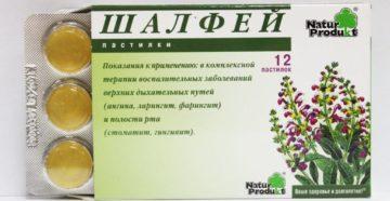 Шалфей детям от кашля: эффективные рецепты и особенности применения